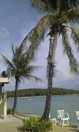 Papillon Resort: desde la tumbona