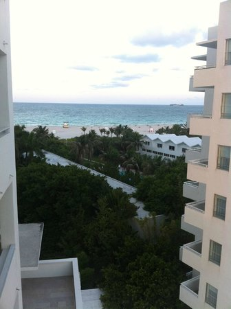 Shore Club South Beach Hotel:                   shore club view