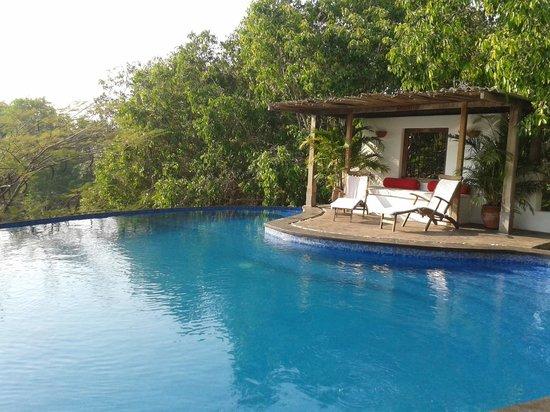 Capella:                   the pool is sparkling clean-it kind of invites u- jan 2013