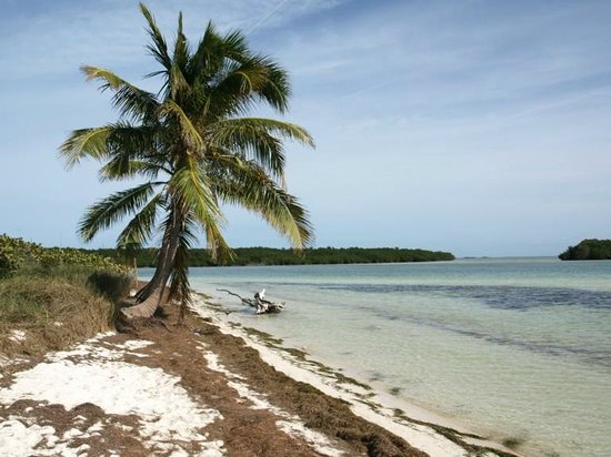 Bahia Honda State Park Campgrounds: Enough beautiful beach to offer some privacy