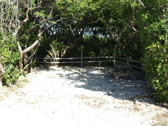 Bahia Honda State Park Campgrounds: Typical primitive campsite