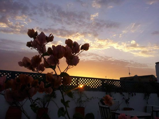 Les Jardins de Riad Laarouss照片