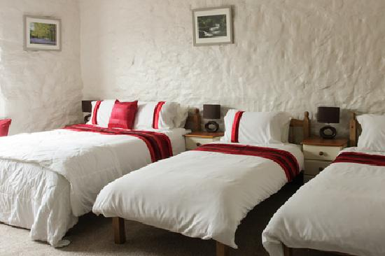 The Cedars B&B: A generously sized family room with two single beds and an indulgent king sized bed. £120 per ni