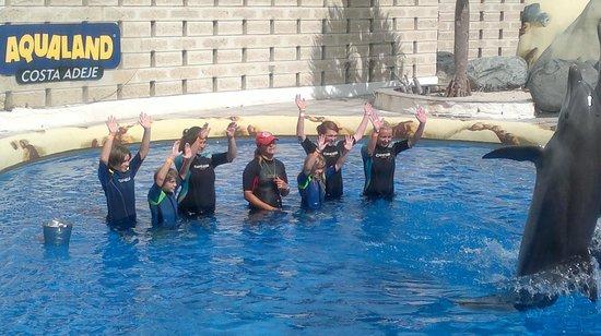 Green Garden Resort & Suites: Aqualand Assistant dolphin trainers!
