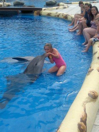 Green Garden Resort & Suites : Aqualand dolphin kiss