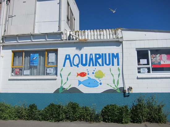Kaikoura Marine Aquarium: cute pictures of the wall outside