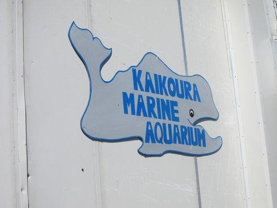 Kaikoura Marine Aquarium
