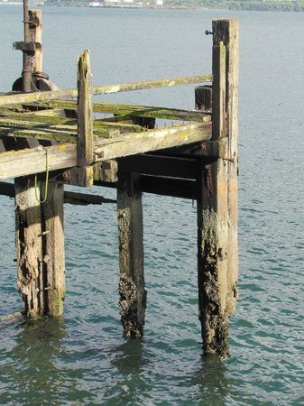 WatersEdge Hotel: Titanic's original wharf....very close to hotel