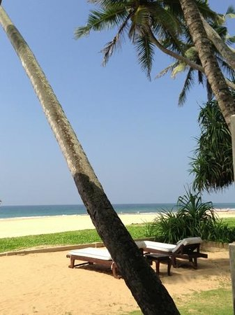 Suite Lanka:                   lovely sun beds