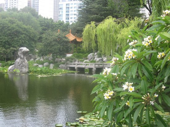 Chinese Garden of Friendship:                   7
