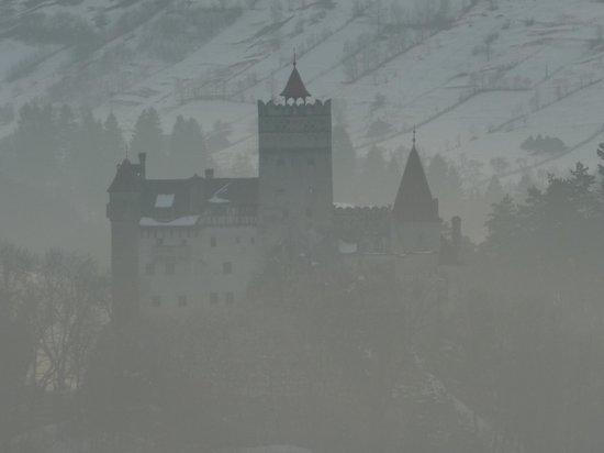 Castle Windows Home Advisor