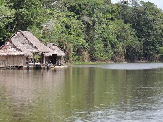 Muyuna Amazon Lodge: Llegando al lodge