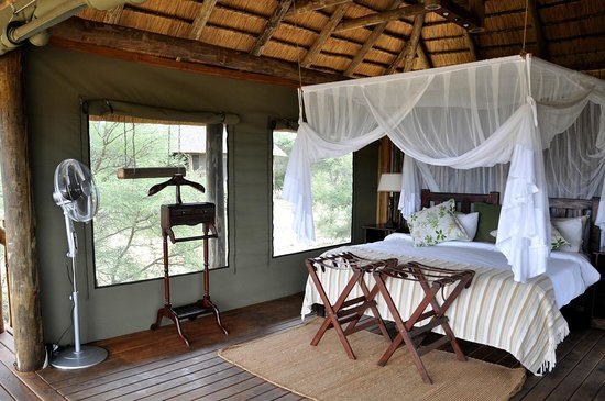 nThambo Tree Camp room with fan