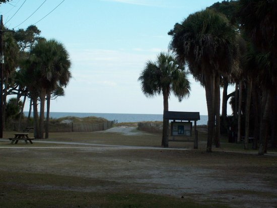 Hunting Island State Park:                   Park area near Lighthouse