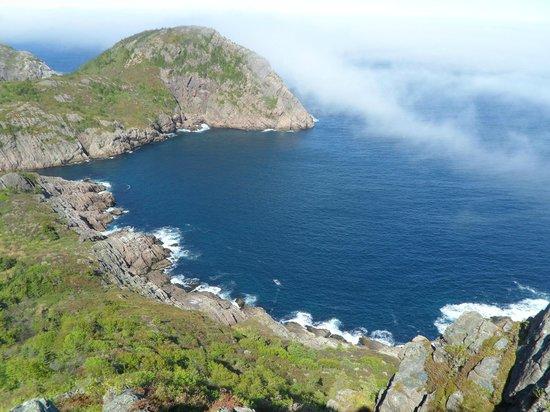 Signal Hill:                   Ocean View