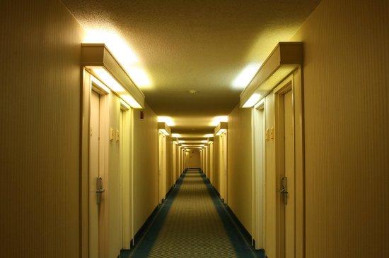 Clarion Inn Airport: Long hallway