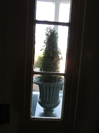 Historic Oak Hill Inn: Boxwood out front door window