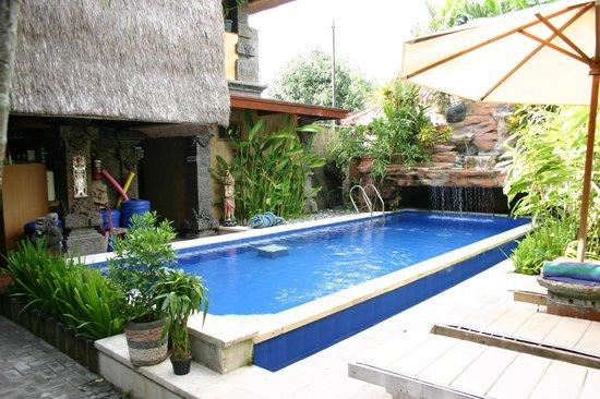 Aahh Bali Bed & Breakfast : La piscine