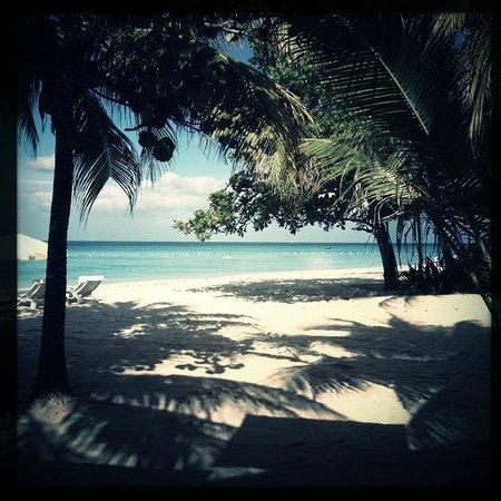 Idle Awhile The Beach:                   Beach