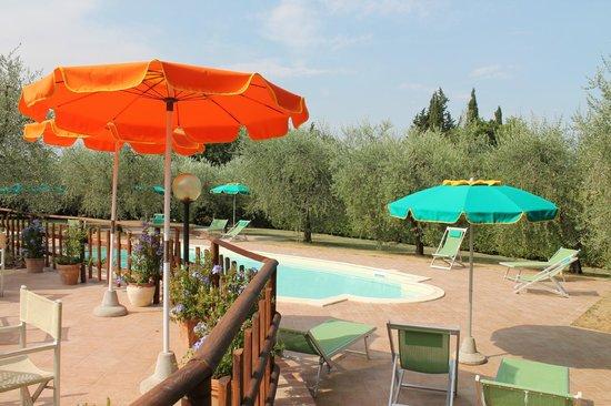 Agriturismo Saletta: piscina e terrazza Saletta