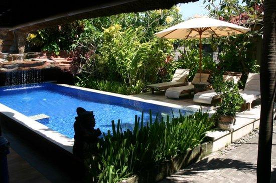 Aahh Bali Bed & Breakfast : Piscine