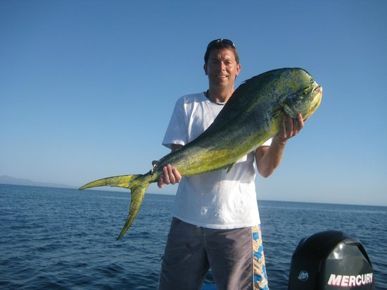 Francisco on the way to coronado island picture of the for Baja california fishing