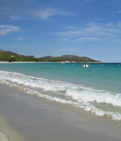 Fiori Di Santa Giulia : plage de santa giulia