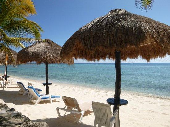 Hacienda de la Tortuga : Palapas on the beach