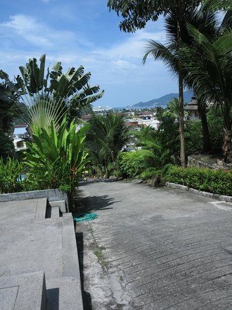 Ocean View Phuket Hotel:                   steep slope