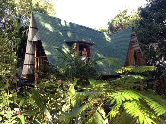 Los Caracoles: House