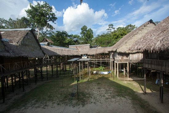 Amazonia Expeditions' Tahuayo Lodge:                   Tahuayo Lodge courtyard