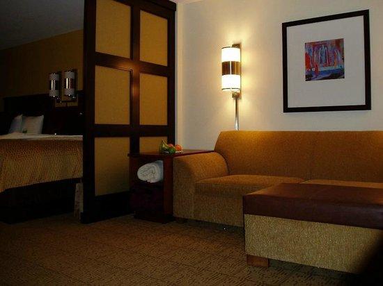 Hyatt Place San Diego/Vista-Carlsbad:                   Sitting area
