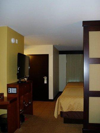 Hyatt Place San Diego/Vista-Carlsbad:                   TV and bedroom