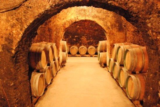 Gourmet Madrid Tours: Underground Cellar