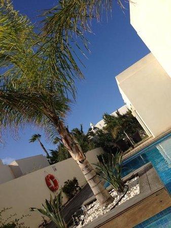 Alondra Villas & Suites: super pool