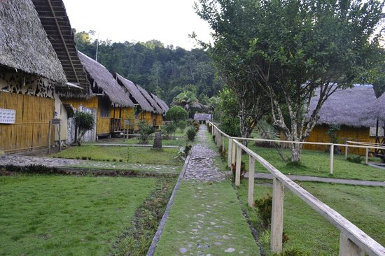 Yarina Eco Lodge: The Lodge