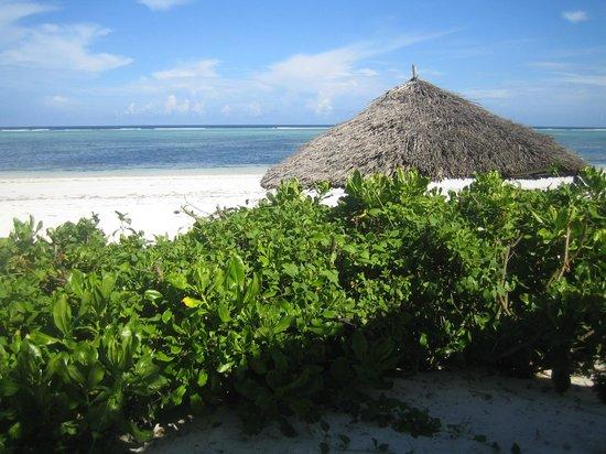 Zanzibar Retreat Hotel: Utsikt från restaurangen