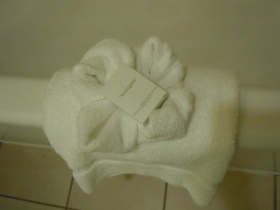 Hampton Inn and Suites Charlottesville - At The University: Nice touch by housekeeping!
