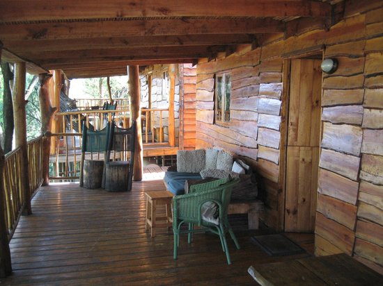 Riverside Lodge:                   Tree house accommodation