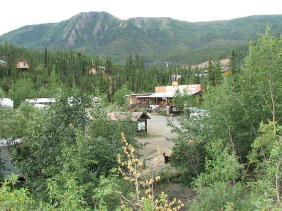 Denali Grizzly Bear Resort : Good but too pricey!!