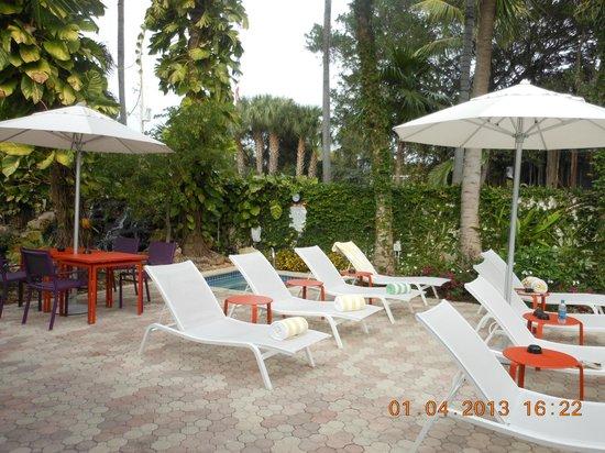Almond Tree Inn: chase lounge