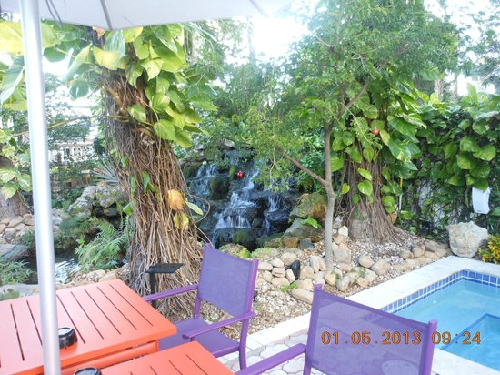 Almond Tree Inn: waterfall