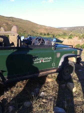 Gondwana Game Reserve:                   Nico's vehicle