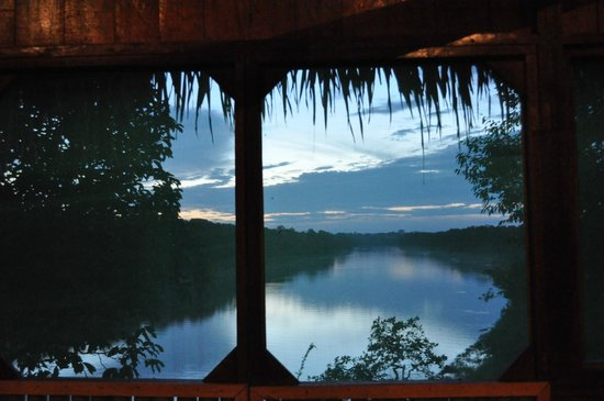 Dolphin Lodge:                   View from the lodge