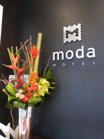 Moda Hotel: entree