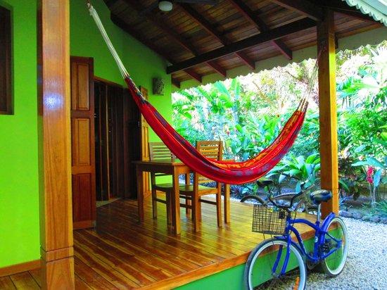 El Pequeno Gecko Verde:                   Home sweet home