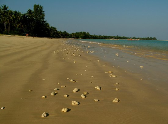 The Sarojin: Stretch of beach