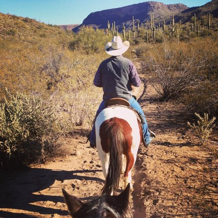 Western Destinations Canyon Creek Ranch - Tours 사진