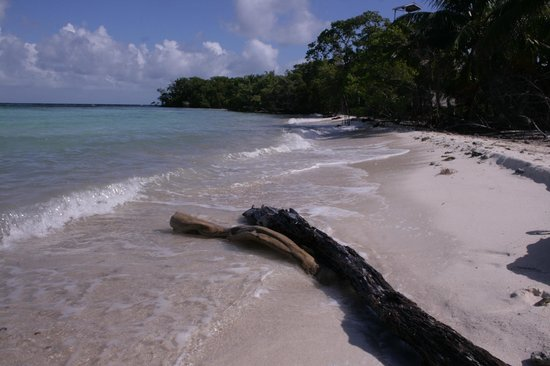 Snake Cayes: West Snake Caye - West Side