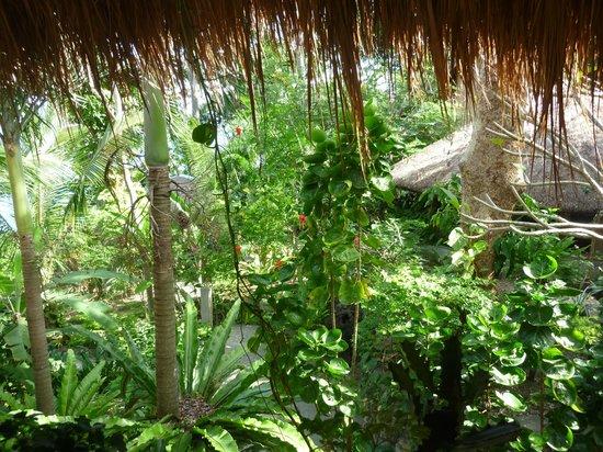Tuko Beach Resort: Blick in den Garten